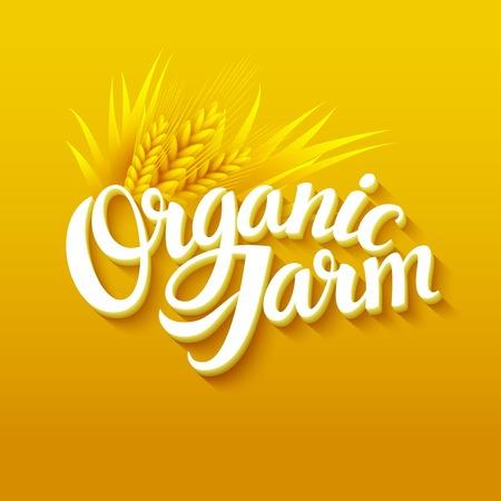 espiga de trigo: Organic Farm. Letras de la mano Vectores