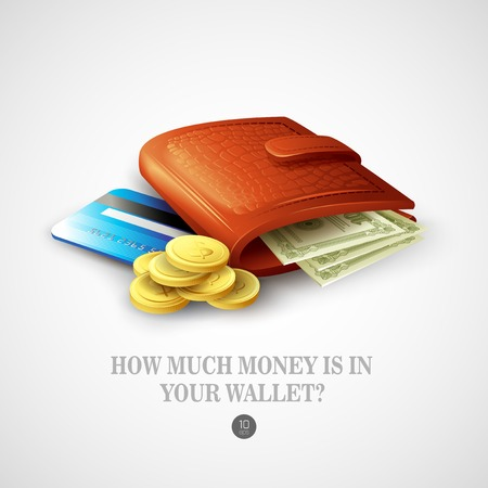 Purse with money, credit cards and coins. Vector illustration Stock Vector - 37618122