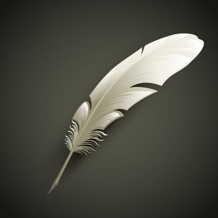 pluma: Pluma Blanca. Vector ilustraci�n de objeto
