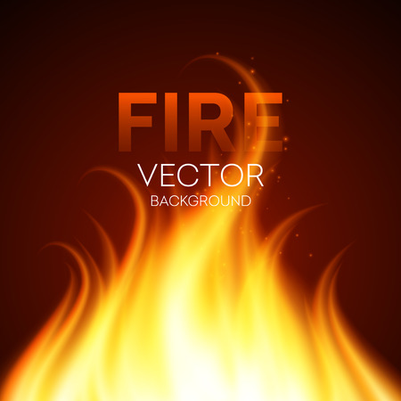 fire vector: Fire realistic background. Vector illustration EPS 10