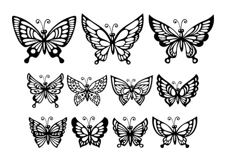 Set of silhouette  wonderful butterflies. Vector illustration