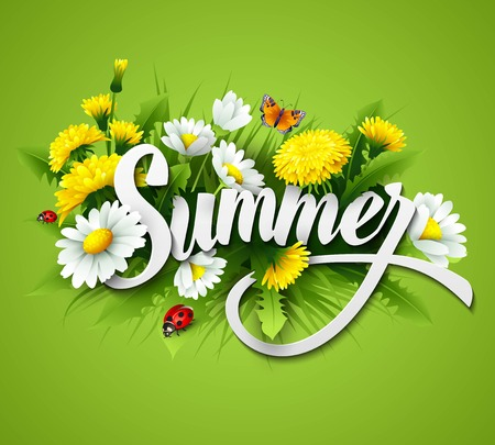 Fresh summer background with grass, dandelions and daisies  Stock Illustratie