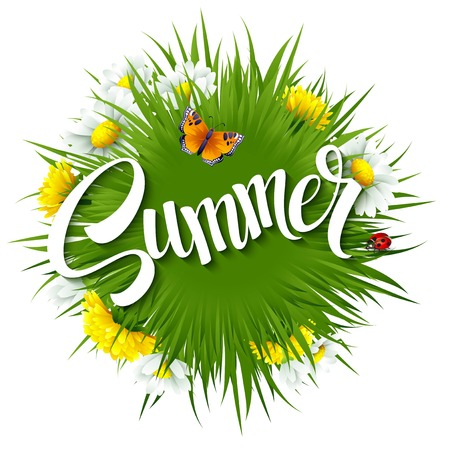 Verse de zomerachtergrond met gras, paardebloemen en madeliefjes EPS 10 Stock Illustratie