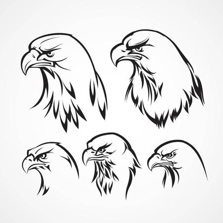 halcones: Plantilla de credencial Águila. Silueta. Ilustración vectorial