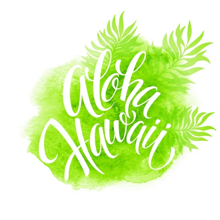 island paradise: Aloha Hawaii illustration, palm leaves watercolor background
