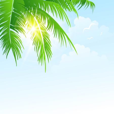 coconut water: Summer holidays vector background  with palm leaves and sea