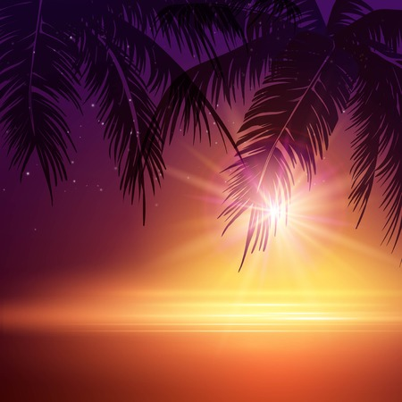 puesta de sol: Noche De Verano. Palmeras en la noche. Ilustraci�n vectorial