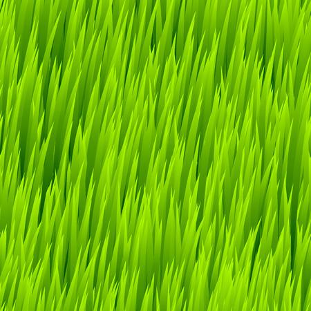 grass: Green grass seamless pattern