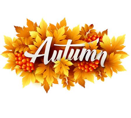 Tipográfica del otoño de hojas de otoño Foto de archivo - 42435348