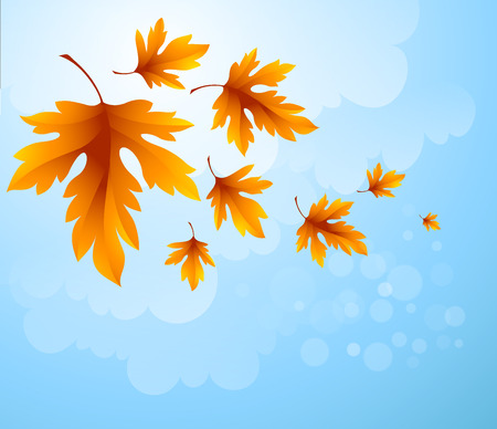 Autumn leaves background of blue sky