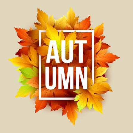 Autumn: Tipográfico otoño. Hoja de la caída. Vectores