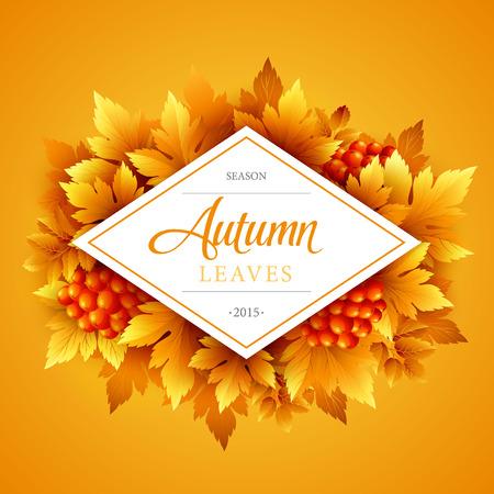 fall leaf: Autumn typographic. Fall leaf.