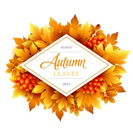 fall leaf: Autumn typographic. Fall leaf.  Illustration