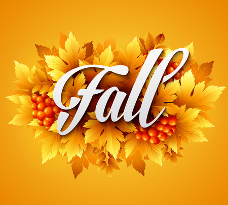 fall foliage: Autumn typographic. Fall leaf. Vector illustration