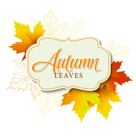 fall leaf: Autumn typographic. Fall leaf. Vector illustration EPS 10 Illustration