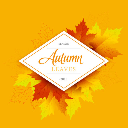 fall: Autumn typographic. Fall leaf. Vector illustration EPS 10 Illustration