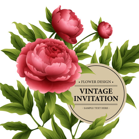 vintage rose: Luxurious  peony flower and leaves greeting card.