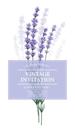 Vintage card with lavender flower.