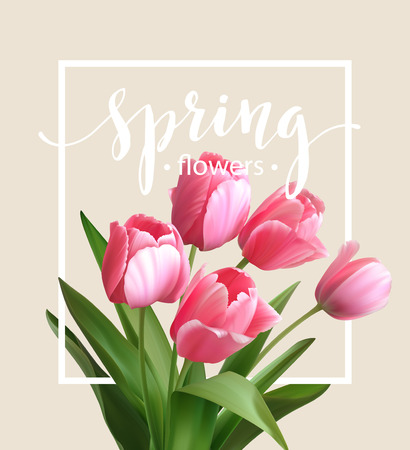 bunch of flowers: Spring text with  tulip flower. Illustration