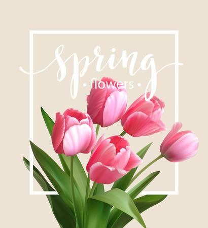 fondo rojo: Texto del resorte con la flor del tulipán. Vectores