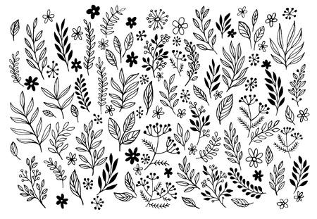 Set of sketches and line doodles  hand drawn design floral elements. Vector illustration EPS10