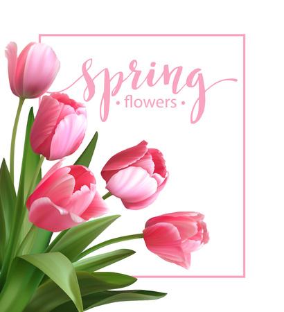 Spring tekst met tulp bloem. Vector illustratie EPS10