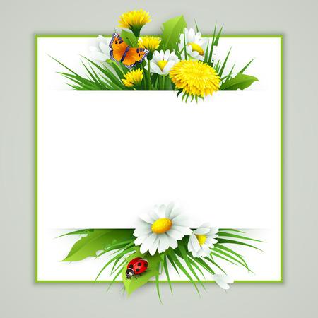 bouquet fleur: Frais de fond de printemps avec de l'herbe, le pissenlit et de marguerites. Vecteur