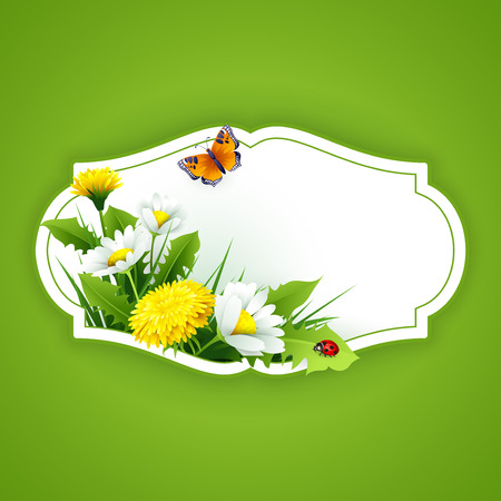 elegant backgrounds: Fresh spring background with grass, dandelions and daisies. Vector