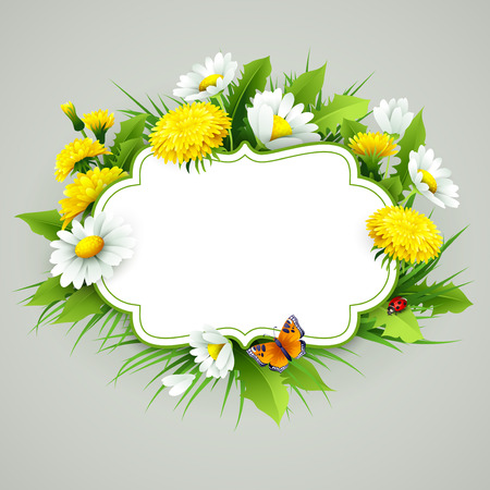 3d flower: Fresh spring background with grass, dandelions and daisies. Vector