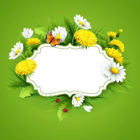 borde de flores: fondo de primavera fresca con la hierba, dientes de león y margaritas. Vector