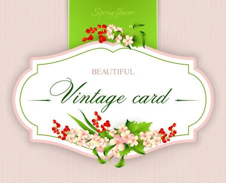 eps10 vector: Spring  vintage elegant card with  flowers. Vector illustration EPS10 Illustration
