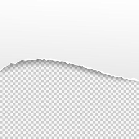 striscione di carta strappata su sfondo trasparente. Vector illustration EPS10