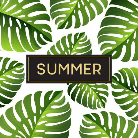 monstera leaf: Tropical monstera leaves design for text card. Vector illustration EPS10