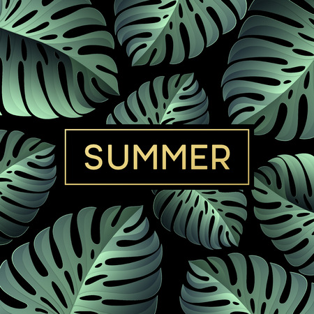 monstera: Tropical monstera leaves design for text card. Vector illustration EPS10