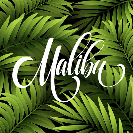 handwriting: Malibu California handwriting lettering on the palm leaf tropical background. Vector illustration EPS10