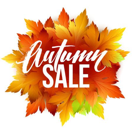 Autumn sale lettering design. Fall leaf. Label, banner template.