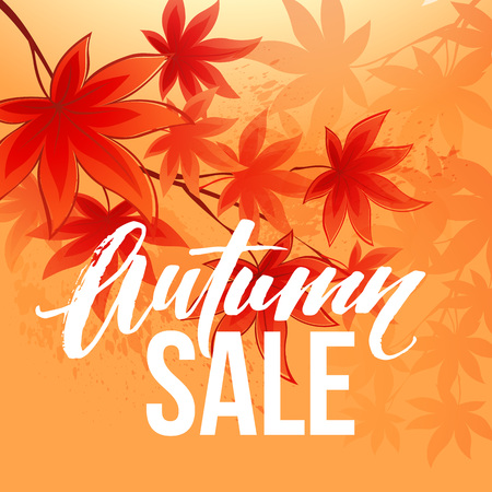 fall leaves: Autumn sale banner with fall leaves.