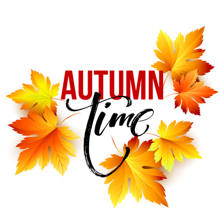 fall leaf: Autumn time seasonal banner design. Fall leaf. Vector illustration EPS10