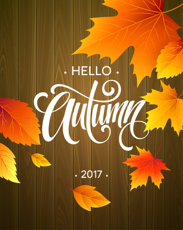 slush: Hello, Autumn. The trend calligraphy. Background of Fall leaves. Concept leaflet, flyer, poster advertising. Vector illustration EPS10