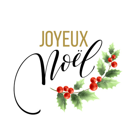 Merry Christmas card template with greetings in french language. Joyeux noel. Vector illustration EPS10 Векторная Иллюстрация