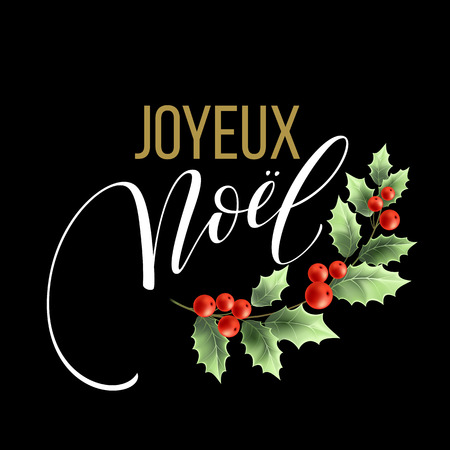 joyeux: Merry Christmas card template with greetings in french language. Joyeux noel. Vector illustration EPS10