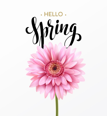 Gerbera Flower Background et Hello Spring Lettering. Illustration Vecteur