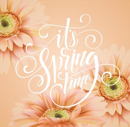 gerber: Gerbera Flower Background and Spring Lettering. Vector Illustration