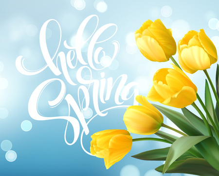 Hello Spring hand Lettering with tulip flower. Vector illustration Illustration