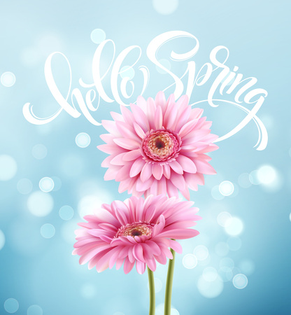 Gerbera Flower Background and Hello Spring Lettering. Vector Illustration Illustration