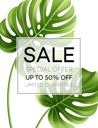 monstera leaf: Sale banner or poster with palm leaves and jungle leaf. Floral tropical summer background. Vector illustration