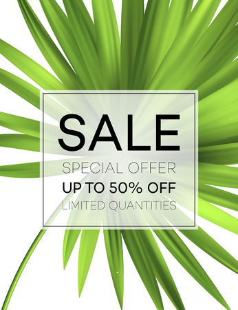 Sale banner or poster with palm leaves and jungle leaf. Floral tropical summer background. Vector illustration Фото со стока - 76643306