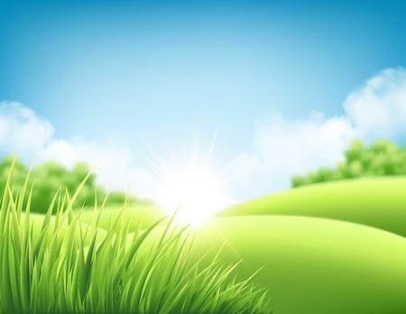 여름 자연 일출 배경, 푸른 언덕과 초원, 푸른 하늘과 구름 풍경. 벡터 일러스트 레이 션
