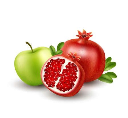 Realistic Pomegranate or garnet on the white background. Vector illustration Ilustrace