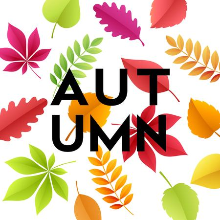 Autumn banner with fall leaves Vector illustration